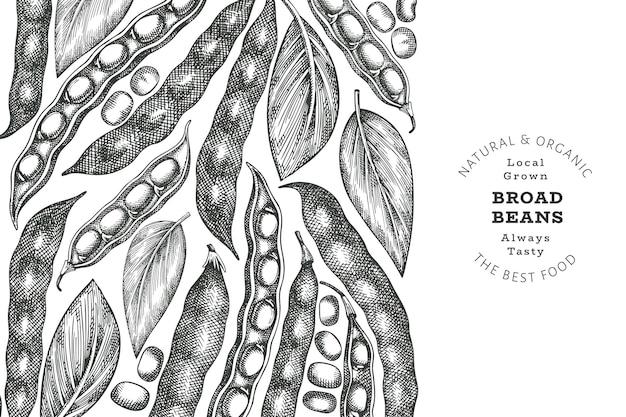 Modelo de design de favas desenhadas à mão