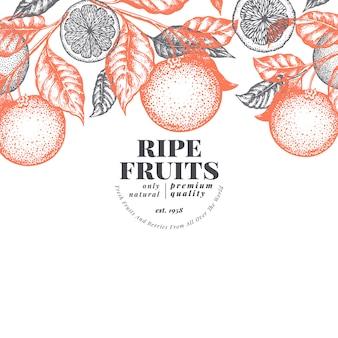 Modelo de design de fruta laranja. ilustração tirada mão da fruta do vetor. banner de estilo gravado. fundo de citrino retrô.