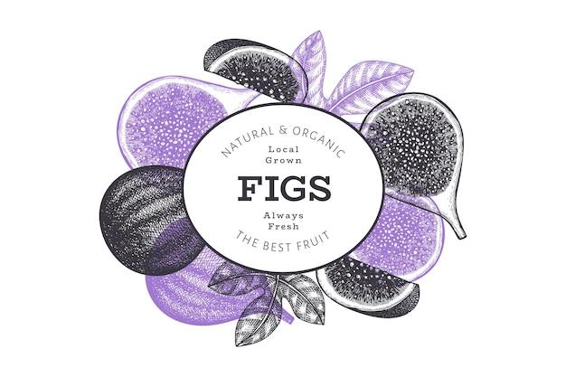 Modelo de design de frutas de figo de mão desenhada.