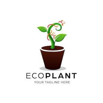 Modelo de design de logotipo de planta ecológica