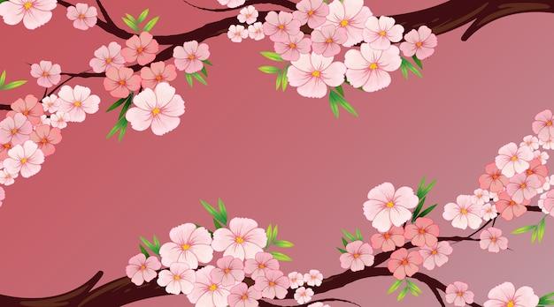 Modelo de design de plano de fundo com flor rosa ou sakura na árvore
