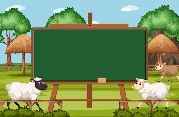 Modelo de design de quadro-negro com ovelhas na fazenda