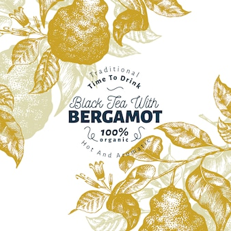 Modelo de design de ramo de bergamota. quadro de limão kaffir. ilustração tirada mão da fruta do vetor.