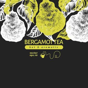 Modelo de design de ramo de bergamota. quadro de limão kaffir.