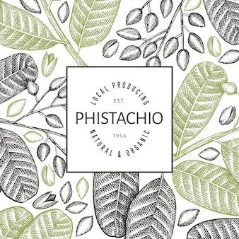 Modelo de design de ramos e grãos de phistachio desenhado à mão