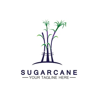 Modelo de design do ícone do logotipo da cana-de-açúcar símbolo ilustração vetorial