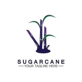 Modelo de design do ícone do logotipo da cana-de-açúcar símbolo ilustração vetorial Vetor Premium
