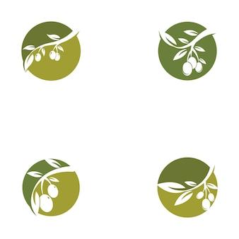 Modelo de design do logotipo olive