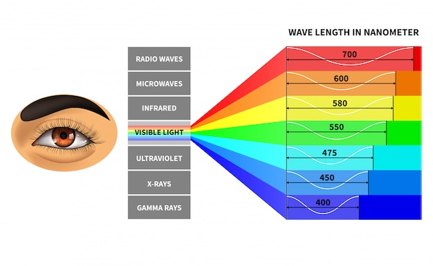 Modelo de espectro de luz visível