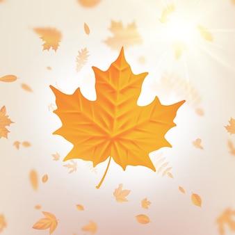 Modelo de folhas caindo outono para cartazes, banners, folhetos, apresentações, relatórios. queda de folhagem e folha de álamo voando no borrão de movimento do vento.