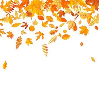 Modelo de folhas de outono caindo laranja e amarelo.