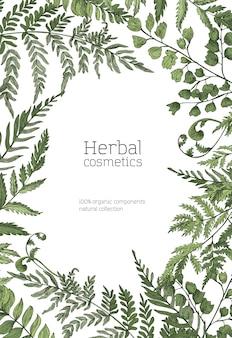 Modelo de folheto ou pôster com moldura feita de samambaias da floresta, ervas selvagens, plantas herbáceas verdes em fundo branco