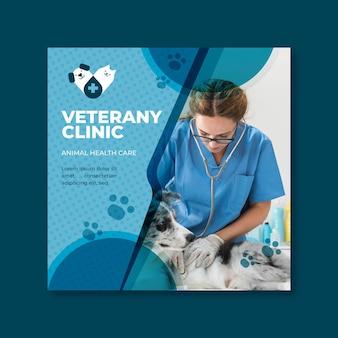 Modelo de folheto veterinário
