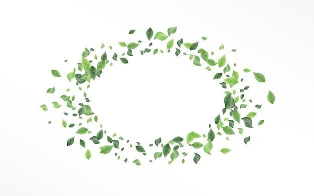 Modelo de fundo branco de movimento de folha de floresta