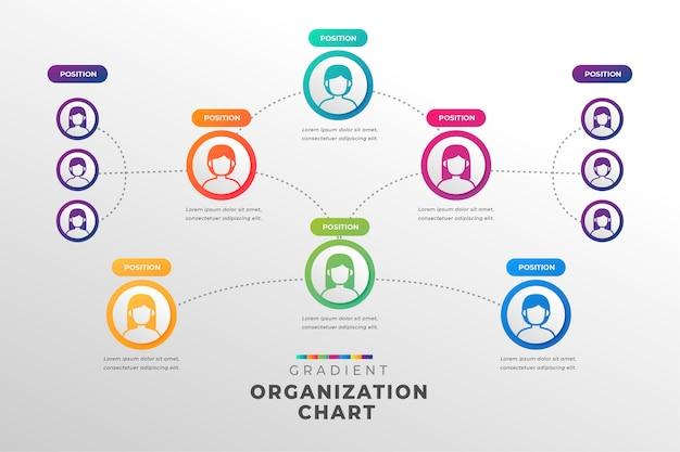 Modelo de gráfico organizacional de estilo gradiente