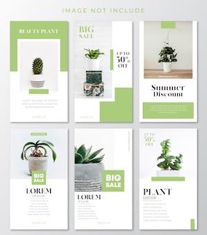 Modelo de histórias de instagram de planta verde