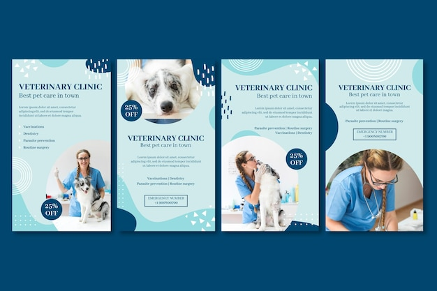 Modelo de histórias veterinárias do instagram