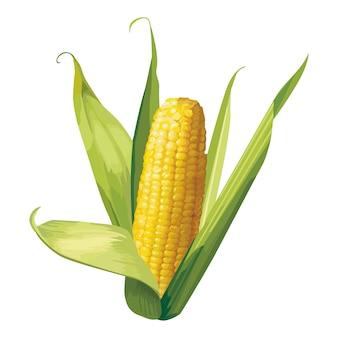 Modelo de ilustração de design de vetor de milho