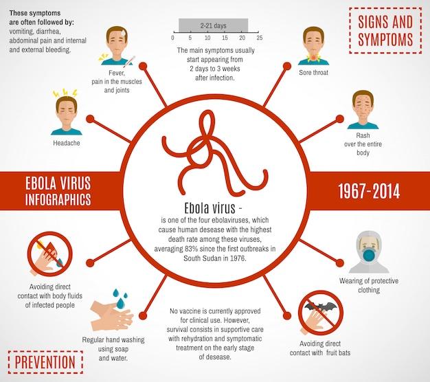 Modelo de infográfico de vírus ebola
