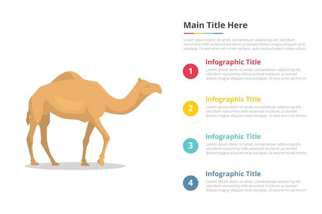 Modelo de infográficos de camelo