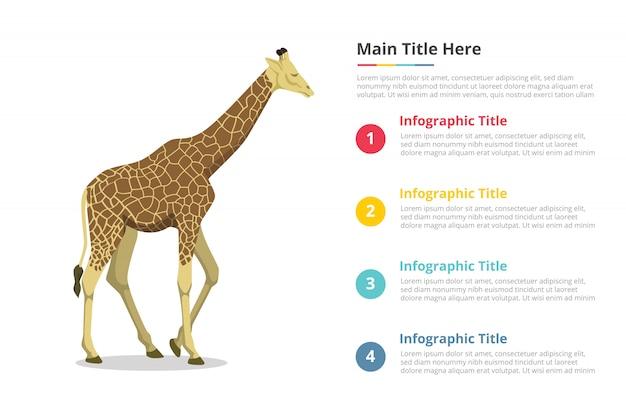 Modelo de infográficos de girafa