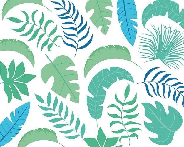 Modelo de layout de folhagem de palmeiras exóticas de folhas tropicais