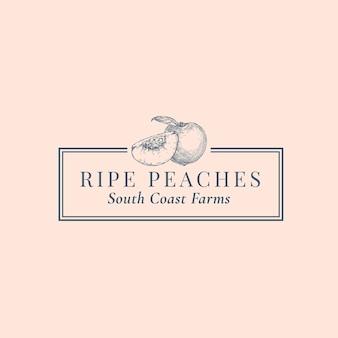 Modelo de logotipo abstrato de pêssegos. mão desenhada frutas sillhouette sketch com elegante tipografia retro e quadro.