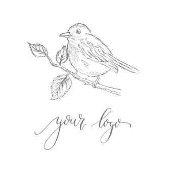 Modelo de logotipo com um pássaro em um galho