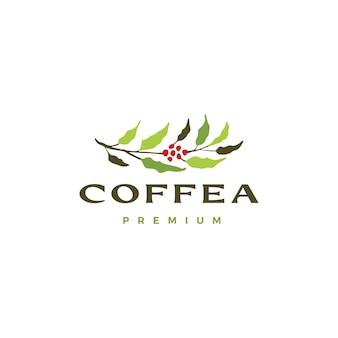 Modelo de logotipo da árvore de café coffea