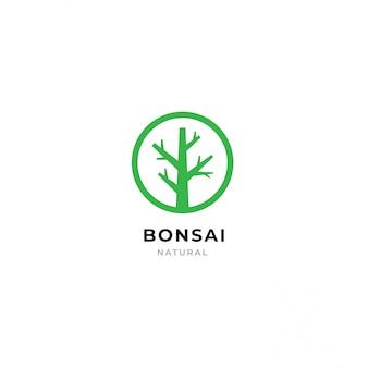 Modelo de logotipo de bonsai