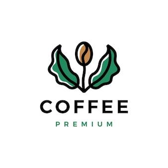 Modelo de logotipo de broto de folha de árvore de feijão de café
