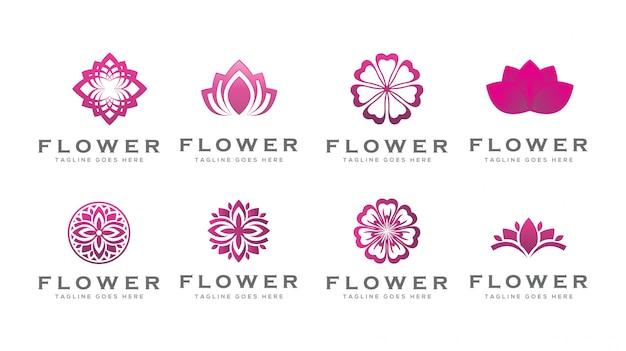 Modelo de logotipo de flor de lótus de beleza