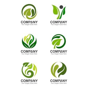 Modelo de logotipo de folha abstrata, ícones de folha, conjunto de logotipo verde