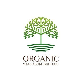 Modelo de logotipo de folha de natureza orgânica