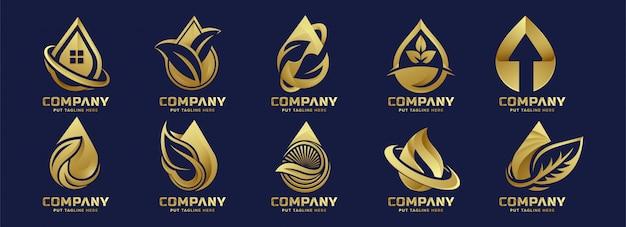 Modelo de logotipo de gota de água eco de luxo premium para empresa