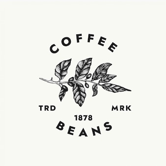 Modelo de logotipo de grãos de café para seus projetos criativos e marca de café.