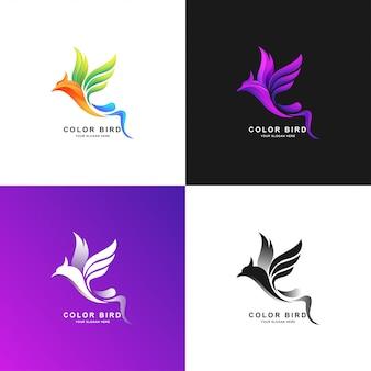 Modelo de logotipo de pássaro com cor gradiente