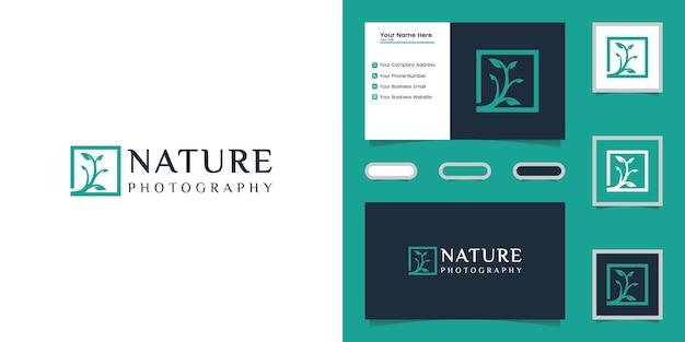 Modelo de logotipo e cartão de visita da fotografia da árvore da natureza