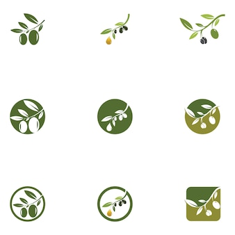 Modelo de logotipo olive