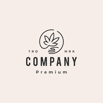 Modelo de logotipo vintage de cânhamo cannabis cuidados hipster