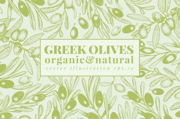 Modelo de oliveira. ilustração vintage molduras de mão desenhada estilo gravado.