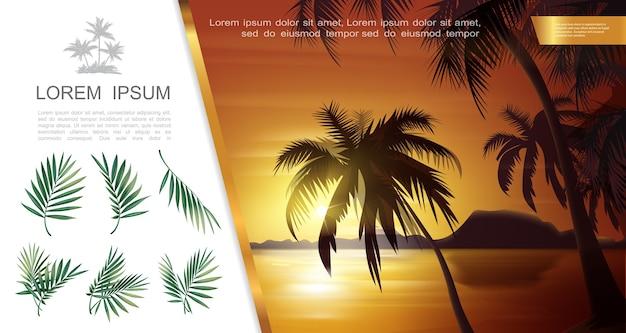 Modelo de paisagem de bela natureza tropical com ilustração vetorial de silhuetas de palmeiras e folhas