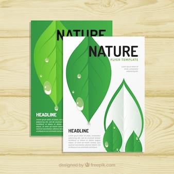 Modelo de panfleto de natureza com folhas planas