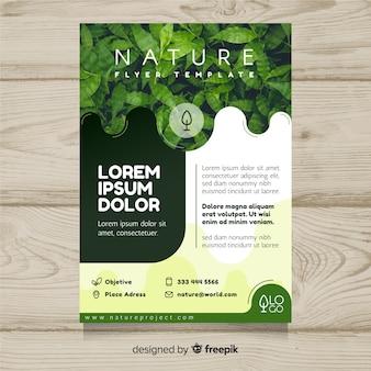 Modelo de panfleto de natureza