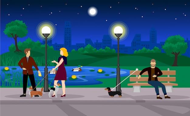 Modelo de parque de verão colorido à noite