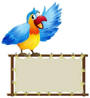 Modelo de placa com papagaio bonitinho no fundo branco