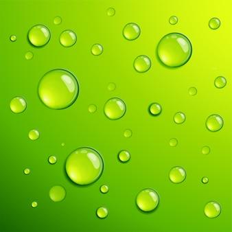 Modelo de plano de fundo de dros de orvalho de água transparente verde fresco