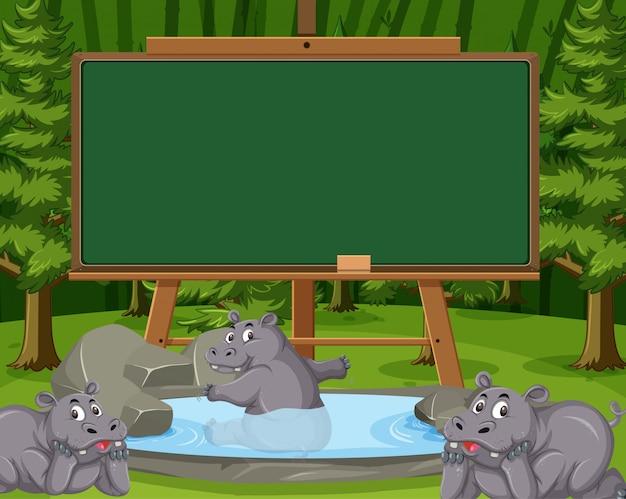 Modelo de quadro-negro com hipopótamo na lagoa