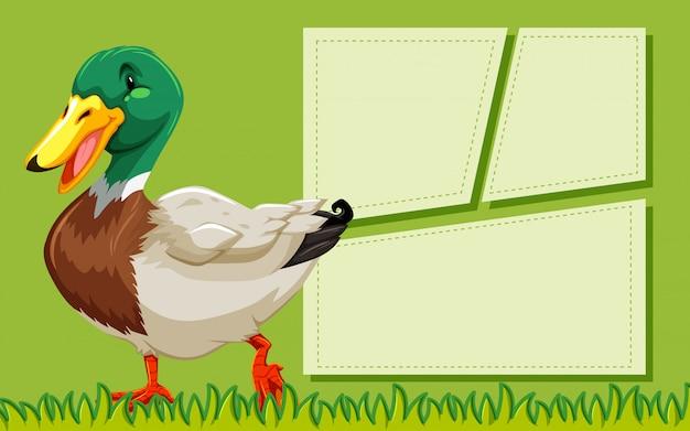 Modelo de quadro verde de pato