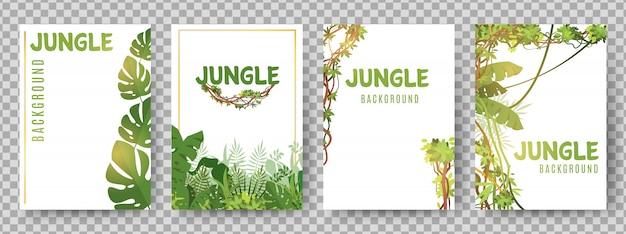 Modelo de quadros tropicais verdes. cartões de vetores de plantas da selva